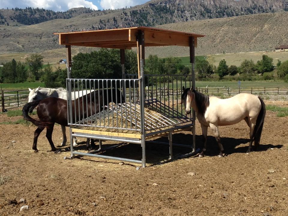 Hay saver horse feeder