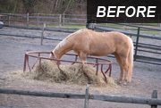 Before using a hay saver hay feeder