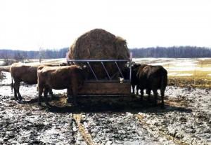 CattleHaySaver