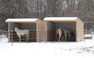 Wrangler Run In Horse Shelter - 12 x 12 Open Shelter Frame