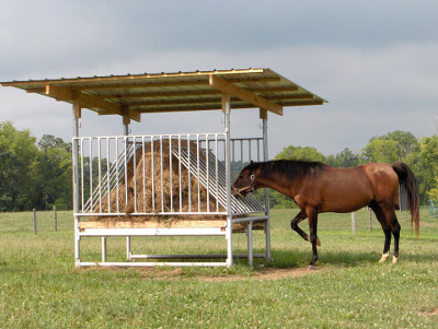 hay feeder for horses
