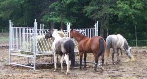 Klene Pipe's Horse Hay Feeders