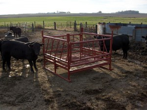 Klene Pipe's Cattle Hay Feeder