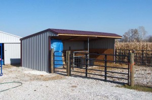 Wrangler Run in Horse Shelter - 12 x 24 Open Shelter Frame