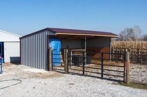 Wrangler Run in Horse Shelter - 12 x 24 Open Shelter Frame