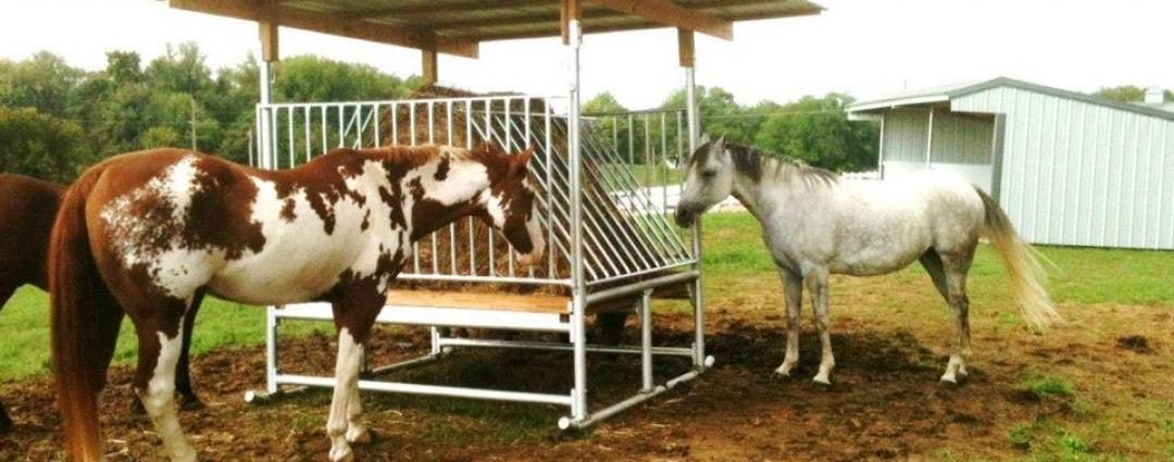 Klene Pipe H-8 Horse Hay Feeder in Use