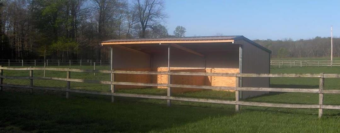 Wrangler Run In Horse Shelter