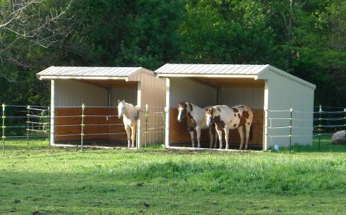 Horse Shelters Metal : Wrangler run in horse shelter kits klene pipe structures