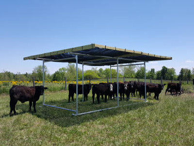 Portable Shade Structures