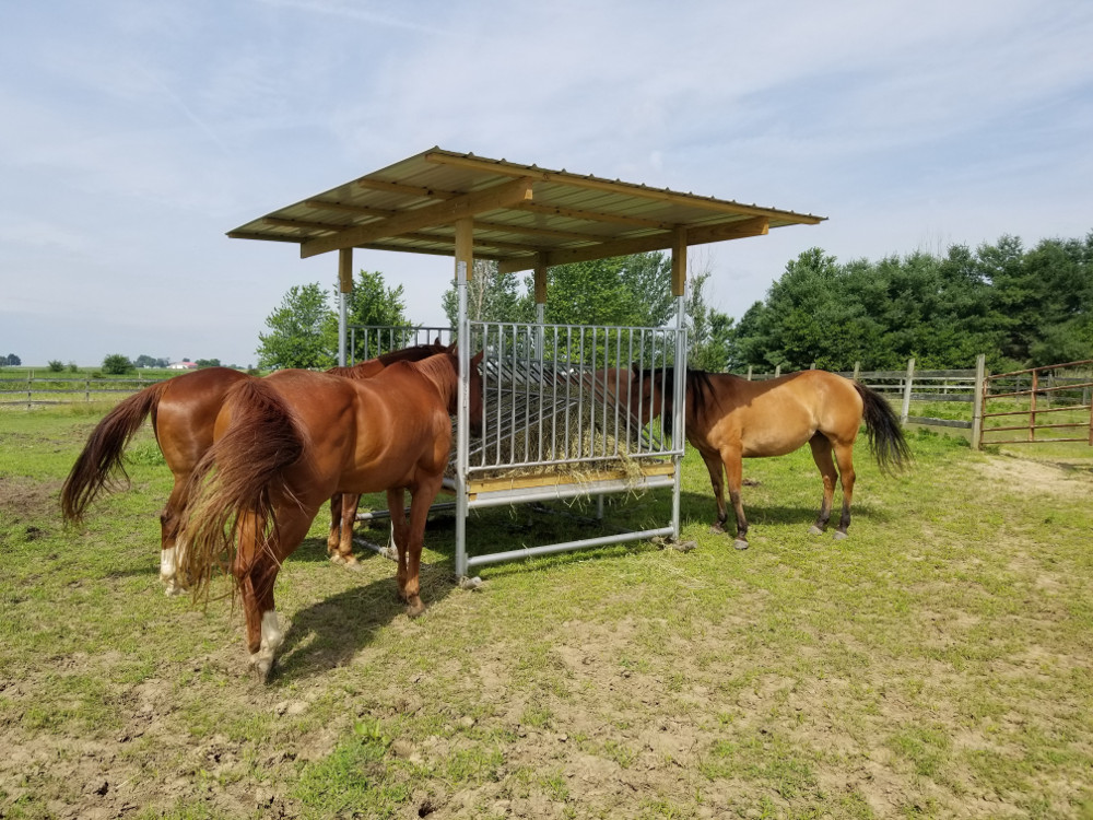 H-8 Hay Feeder for Horses