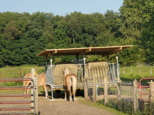 H-12 Horse Hay Feeder